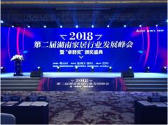 """蓝天豚硅藻泥蝉联""""2018湖南家居行业年度十大影响力品"""