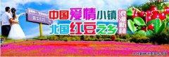 """中国爱情小镇·北国红豆之乡 大兴安岭新林""""三行情书"""