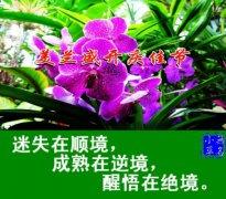 """刘宏伟律师:面对""""三境""""的态度"""